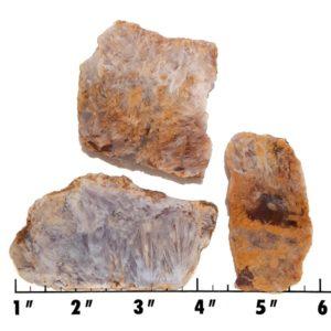 Slab1362 - Sagenite Agate Slabs