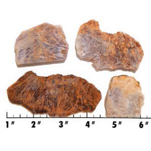 Slab1364 - Sagenite Agate Slabs