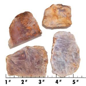 Slab1379 - Sagenite Agate Slabs