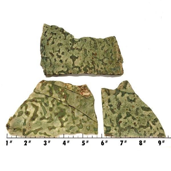Slab156 - Frogskin Jasper Slabs