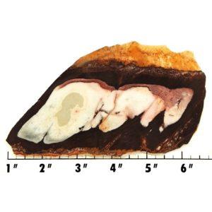 Slab1792 - Outback Jasper Slab