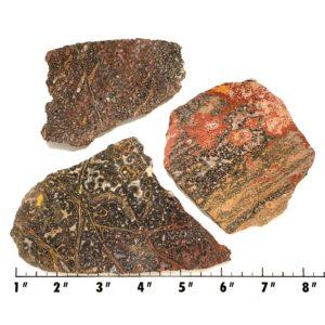 Slab83 - Leopard Skin Jasper slabs