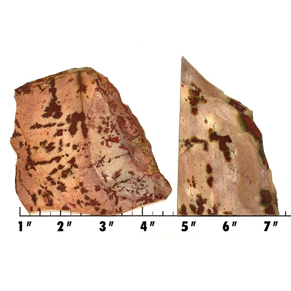 Slab1280 - Dendritic Chinese Jasper Slabs