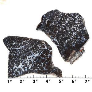 Slab1117 - Medicine Bow Plume Agate slabs