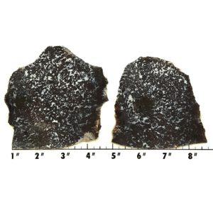 Slab1134 - Medicine Bow Plume Agate slabs