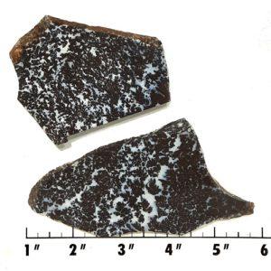 Slab1146 - Medicine Bow Plume Agate slabs