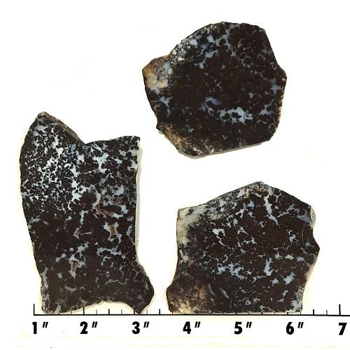 Slab1156 - Medicine Bow Plume Agate slabs