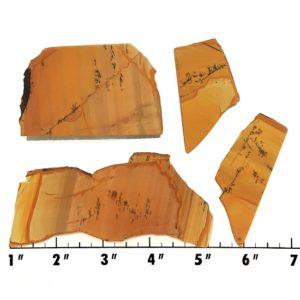 Slab1159 - Owyhee Jasper slabs