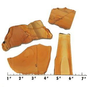 Slab1160 - Owyhee Jasper slabs