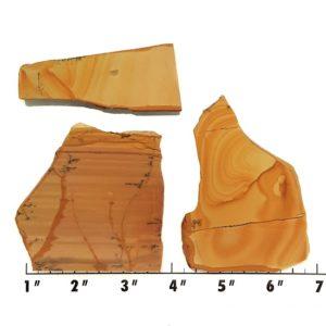 Slab1164 - Owyhee Jasper slabs