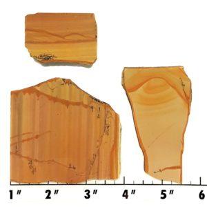 Slab1195 - Owyhee Jasper slabs