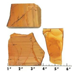 Slab1197 - Owyhee Jasper slabs