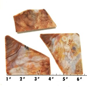 Slab1214 - Fancy Jasper slabs