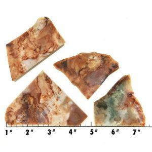 Slab1216 - Fancy Jasper slabs