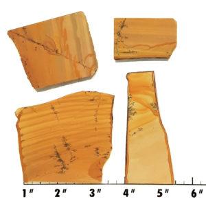 Slab1217 - Owyhee Jasper slabs