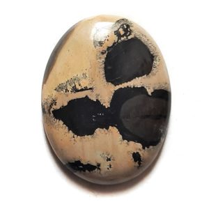 Cab1325 - Paint Brush Jasper Cabochon