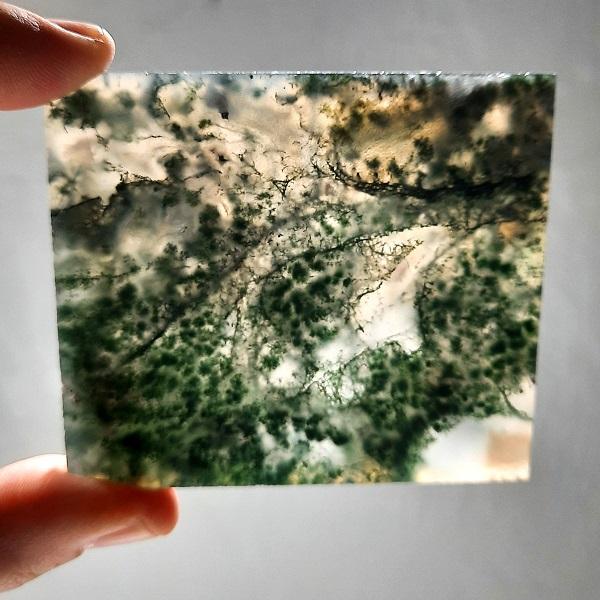 Slab143 - Green Moss Agate slabs