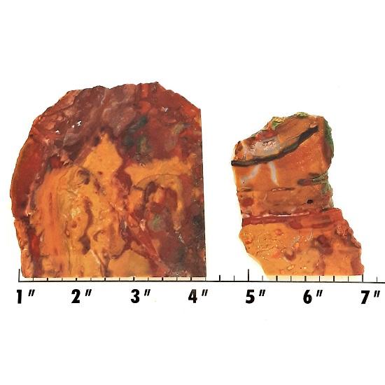 Slab1626 - Marsten Ranch Jasper slabs