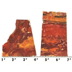 Slab1647 - Marsten Ranch Jasper slabs
