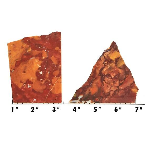 Slab1651 - Marsten Ranch Jasper slabs