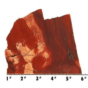 slab191 - Red Snakeskin Jasper Slab