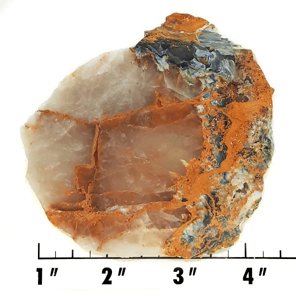 Slab1974R - Pietersite Slab