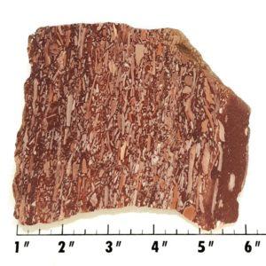 Slab2012 - Montana Bark Jasper slab