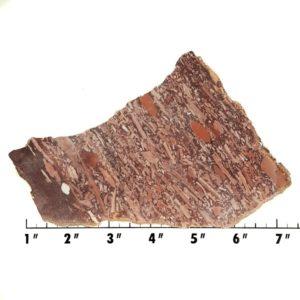 Slab2013 - Montana Bark Jasper slab