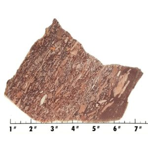 Slab2022 - Montana Bark Jasper slab