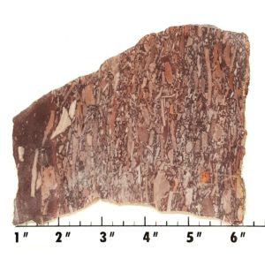 Slab2024 - Montana Bark Jasper slab