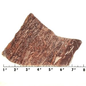 Slab2037 - Montana Bark Jasper slab