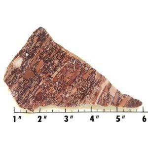 Slab2038 - Montana Bark Jasper slab