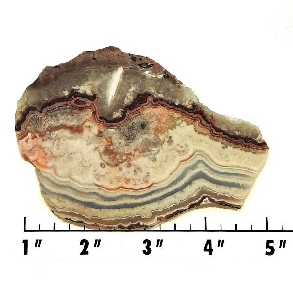 Slab2092 - Crazy Lace Agate slab