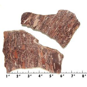 Slab23 - Montana Bark Jasper slabs