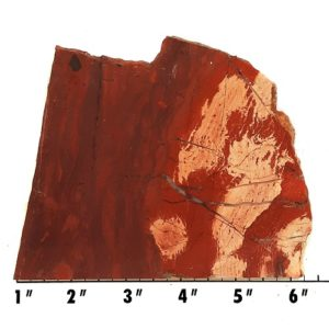 slab233 - Red Snakeskin Jasper Slab