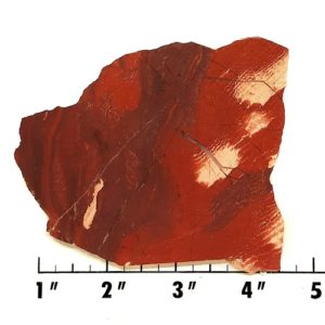 slab238 - Red Snakeskin Jasper Slab