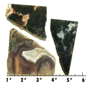 Slab27 - Green Moss Agate slabs