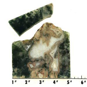 Slab34 - Green Moss Agate slabs