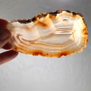 Slab395 - Piranha Agate Slab