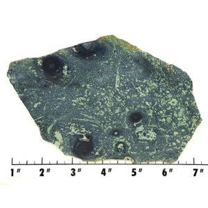 Slab434 - Kambaba Jasper slab