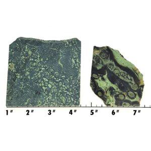 Slab439 - Kambaba Jasper slabs
