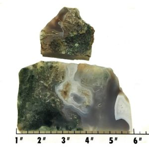 Slab53 - Green Moss Agate slabs
