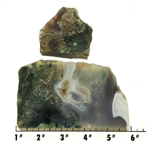 Slab53 - Green Moss Agate slabs