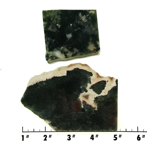 Slab63 - Green Moss Agate slabs
