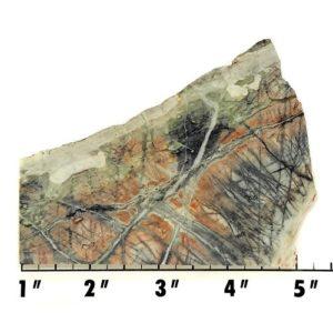 Slab833 - Picasso Marble slab