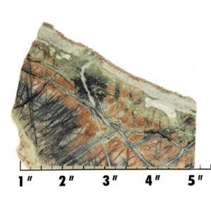 Slab843 - Picasso Marble slab