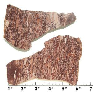 Slab99 - Montana Bark Jasper slabs