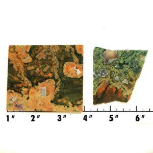 Slab1739 - Rainforest Jasper Slabs