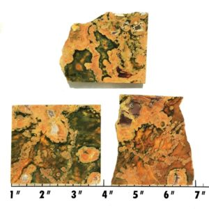 Slab1743 - Rainforest Jasper Slabs