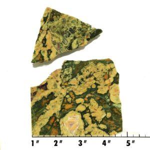 Slab1747 - Rainforest Jasper Slabs